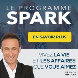 SPARK : tout un programme